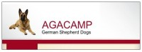 German Shepherd Dog Breeder in Ireland