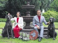 Great Dane breeder Ireland