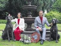 Great Dane breeder Ireland