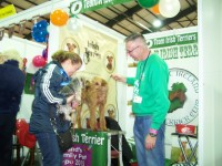 Dog Breed Village Pet Expo